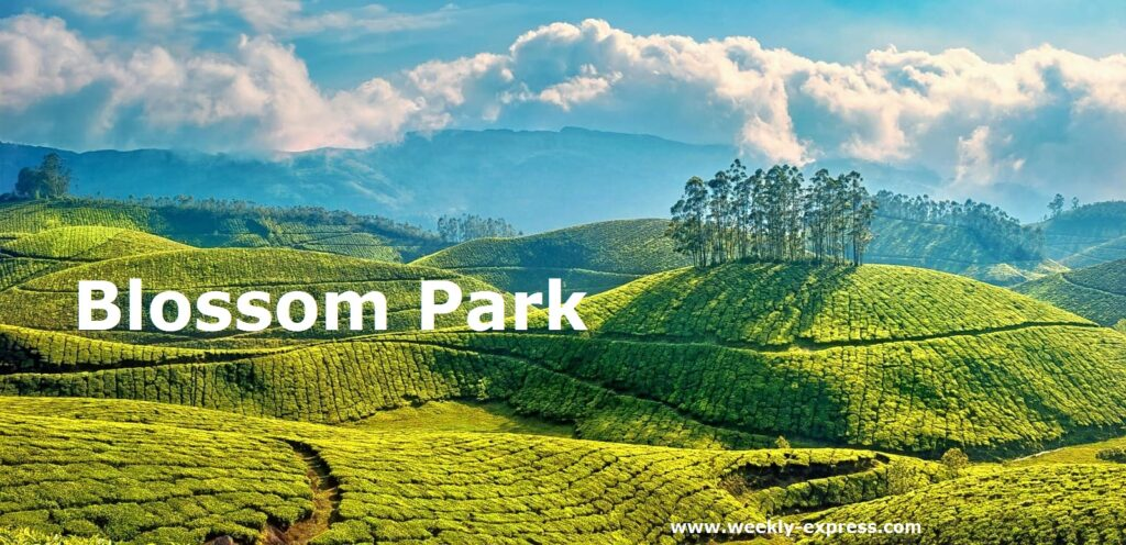 Best Places to Visit in Munnar