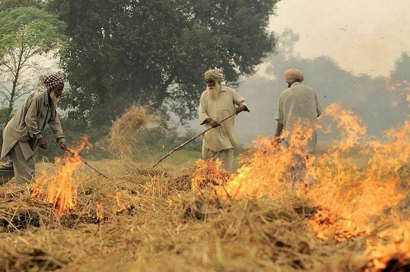 NP India burning